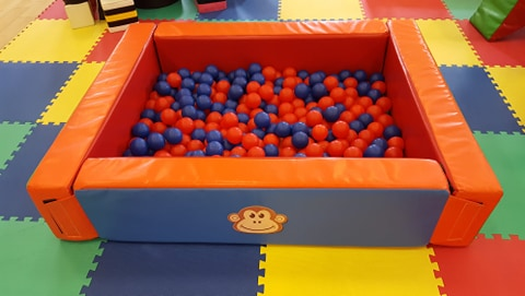 Ball Pit and Balls- £40
